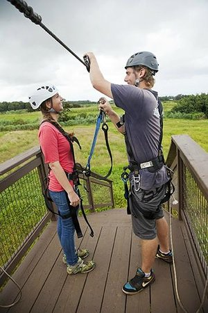 Skyline Eco Adventures - Akaka Falls Zipline Tour: Getting hooked in