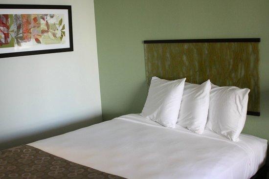 아일랜드 콜로니 호텔 사진