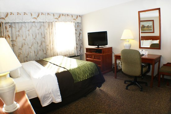 Comfort Inn Buffalo Bill Village: King Room