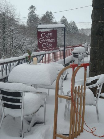 Caffi Gwynant: Open all weather!