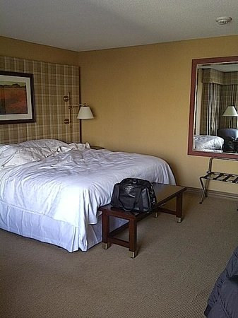 Sheraton Centre Toronto Hotel:                   King Size Bed
