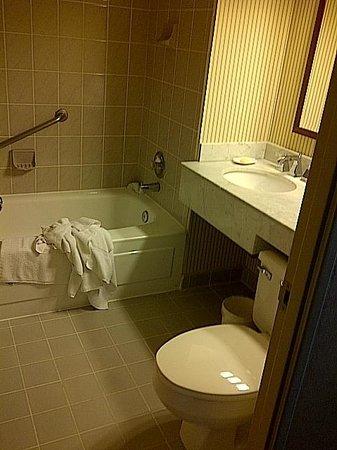 Sheraton Centre Toronto Hotel:                   Bathroom setup