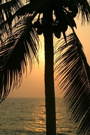 Saman Villas:                   Sunset from the pool area