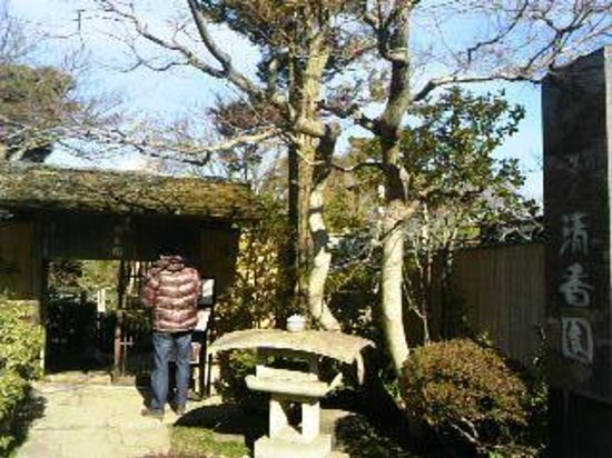 Saitama, Japon :                   清香園へ行ってみました