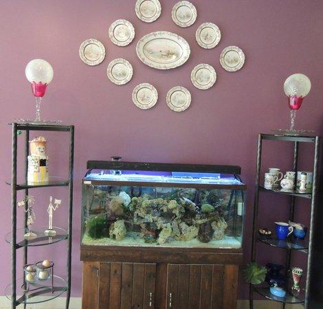 Looking Glass Restaurant: Fish Tank