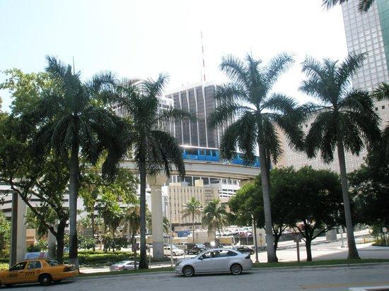 Entr e de l 39 h tel picture of hyatt regency miami miami for Entree hotel