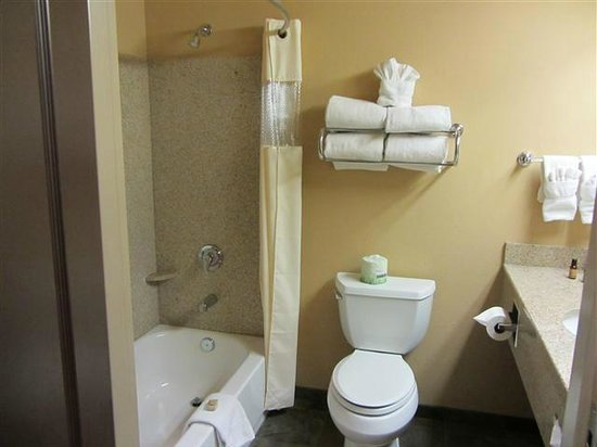 Moenkopi Legacy Inn & Suites: Bathroom (King room)