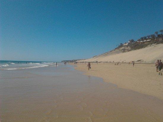 Aparthotel Esquinzo Y Monte Del Mar Hotel: la playa che arriva fino a Jandia