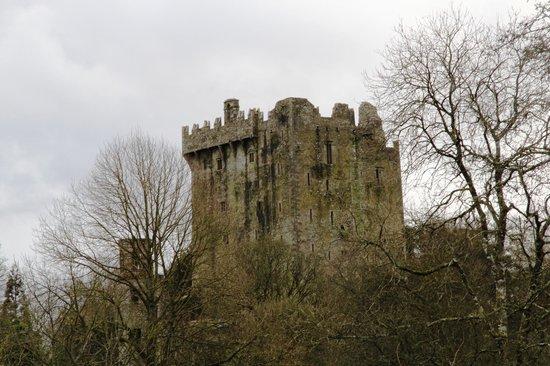 Castillo y Jardines Blarney:                   Blarney Castle