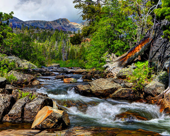 Tahoe Photographic Tours 사진