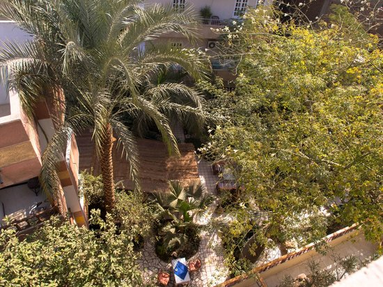 Amon Hotel Luxor:                                     Looking down at the courtyard