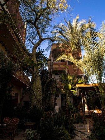Amon Hotel Luxor:                                     Garden Area