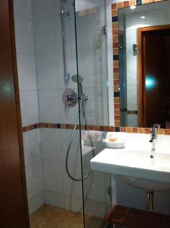 Hotel Saint Paul Rive Gauche: our shower