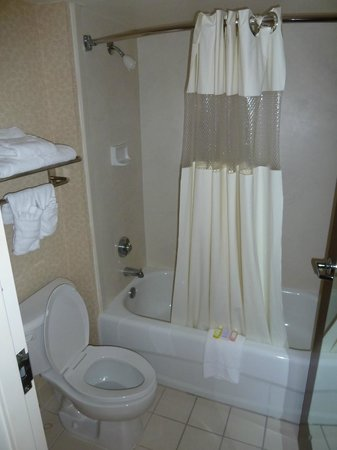 Holiday Inn Express & Suites Blacksburg - University Area :                   salle de bain