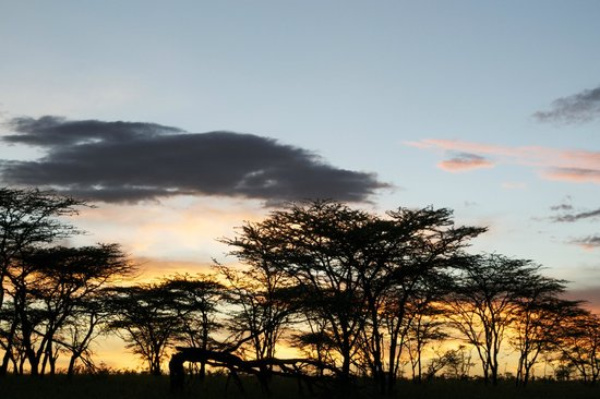 Naboisho Camp, Asilia Africa:                   Amazing Sunset at our fly camp - a must do!