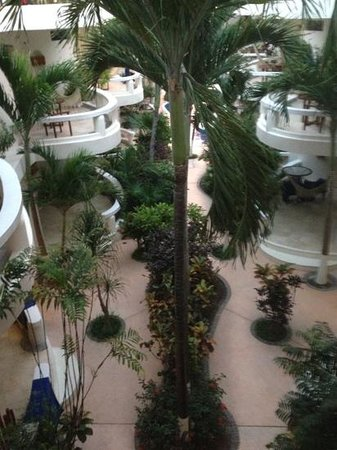 Playa Palms Beach Hotel:                                                       courtyard