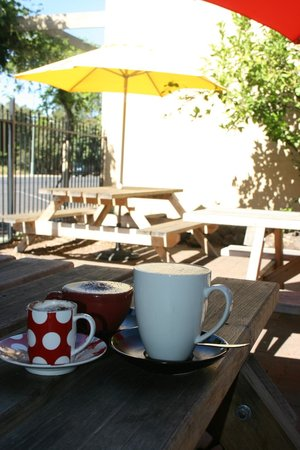 Cafe 109: Shady Courtyard
