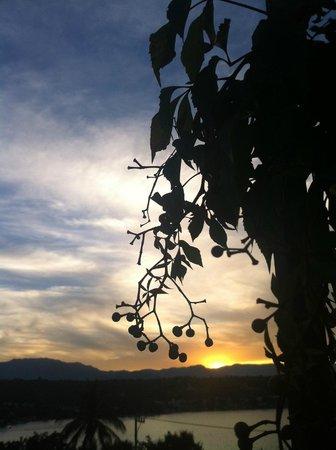 La Casa del Guamuchil:                   paisaje 2