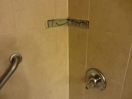 Crowne Plaza Newark Airport:                                                       Shower wall