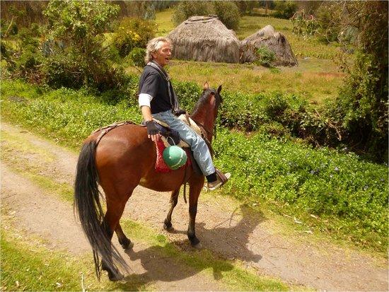 Hacienda San Agustin De Callo: Horse rides