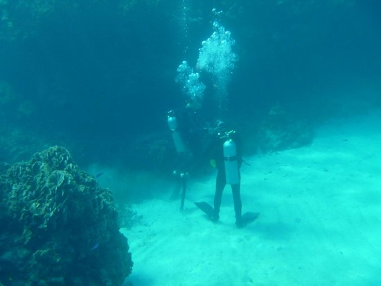 Infinity Bay Spa and Beach Resort:                   Divers just love it here...