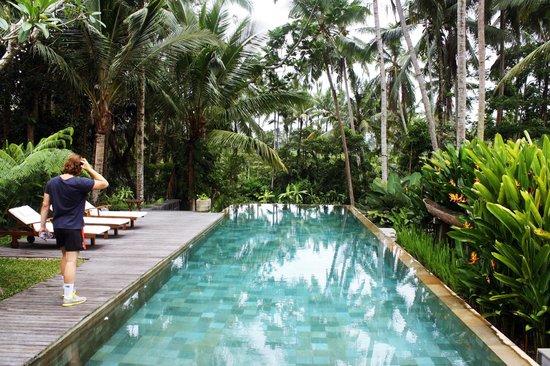 Swarapadi Villa:                   Pool