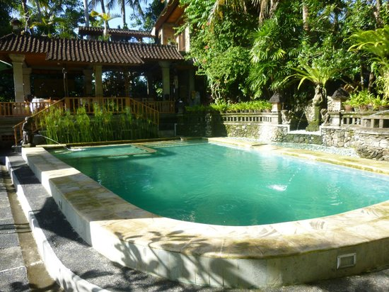 Ketut's Place:                   Pool