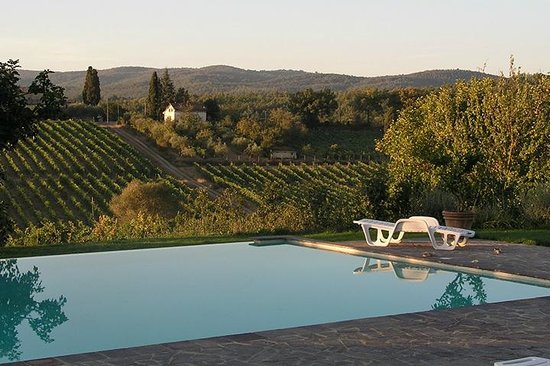 Tenuta di Corsano:                   View from pool