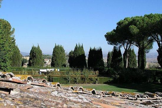 Tenuta di Corsano:                   Views