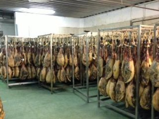 A Taste of Spain Culinary Tours - Andalusia :                   Hams in factory