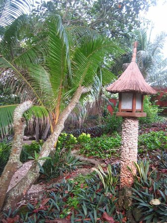 Coco Grove Beach Resort:                                     A bird house - there were a lot of white doves in the resort