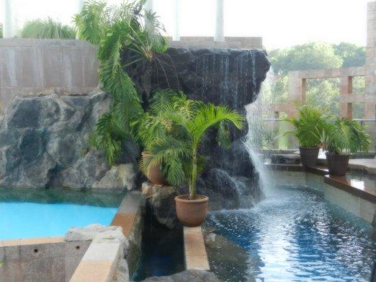 Tribe Hotel:                   piscina