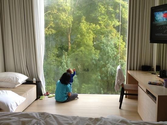 Padma Hotel Bandung:                   studio hill 716