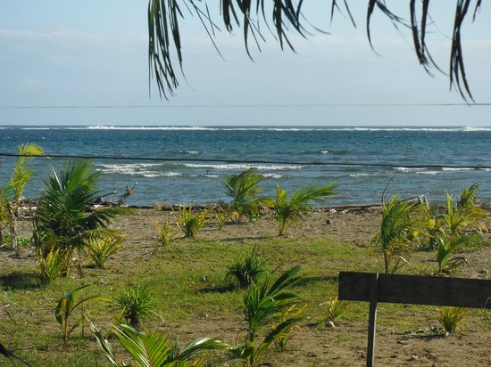 Danny's Village Homestay:                   The Beautiful beach