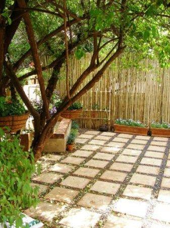 Khayamanzi Guesthouse: Garden