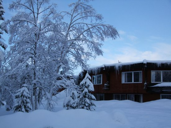 The grounds of the Davvi Arctic Lodge