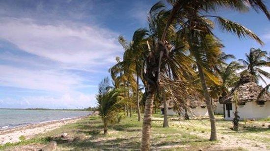 Kilwa Beach Lodge: View of Beach