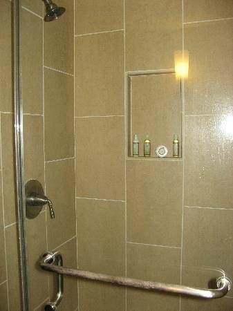 Royal Lahaina Resort: Clean Shower Stall