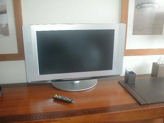Royal Lahaina Resort:                                     small flatscreen tv