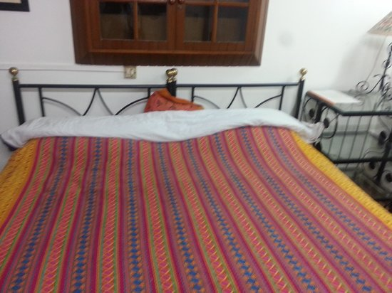 Bed and Breakfast New Delhi:                                                                                           room