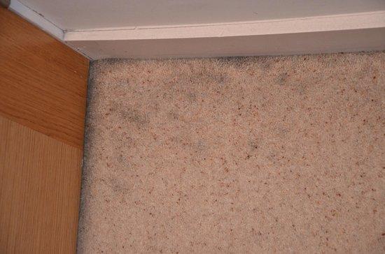 """Avni Kensington Hotel:                                     """"pulizia nelle camere""""                                  """