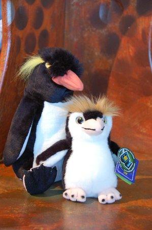 Lake District Coast Aquarium: Gift shop animals