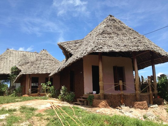 Mabwe Roots Bungalows:                   rooms