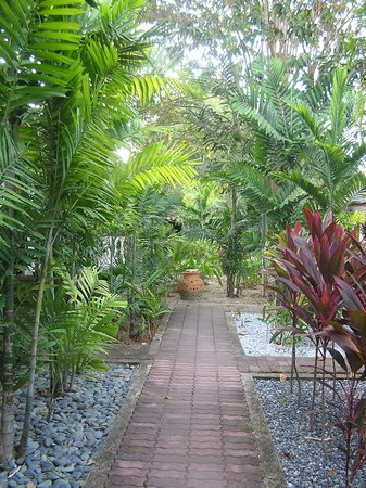 Tropical Resort:                   Small path around the grounds