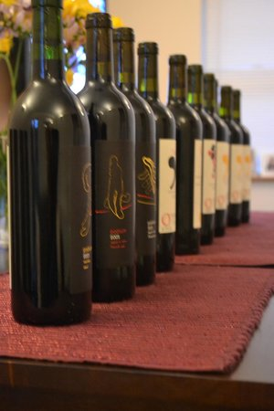 O'Vineyards Bed & Breakfast - Carcassonne: O'Wines at the Stories Residence