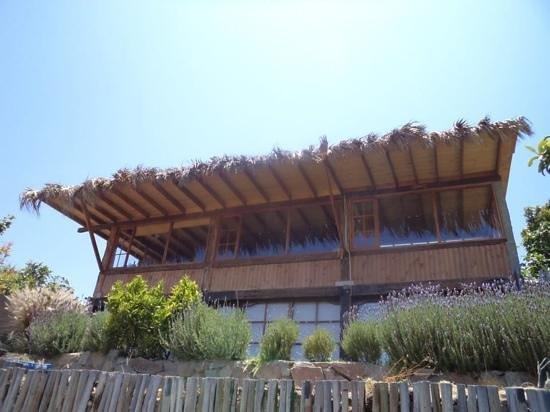Posada Elqui Lombo