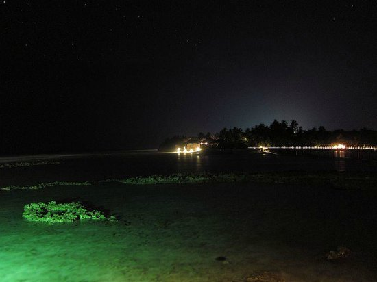 Anantara Veli Maldives Resort: view at night from the Thai restaurant