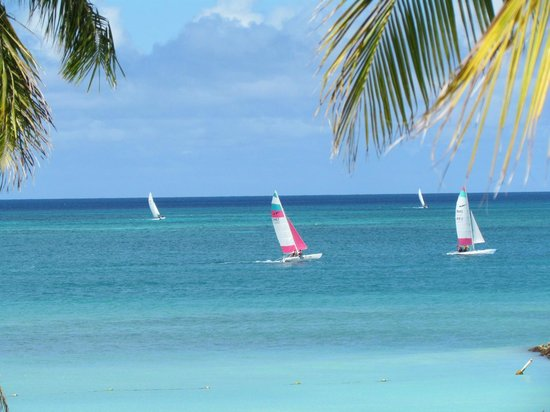 Divi Aruba Phoenix Beach Resort:                   Many different types of watercraft out there!