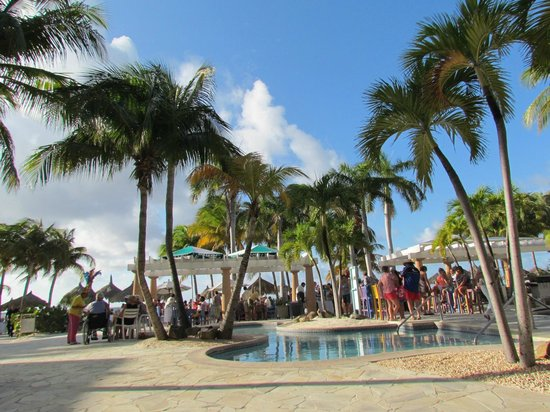 Divi Aruba Phoenix Beach Resort:                   Manager's Party at the pool