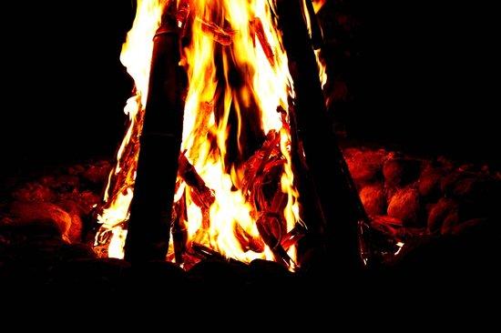 Safari Land Farm & Guest House:                   Camp fire..